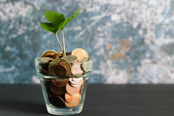 Photo of a seedling growing from a pot of coins