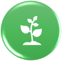 icon showing growing plant