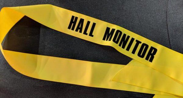 hall monitor sash